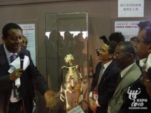 Lucy, 3 million years old, on display at Expo